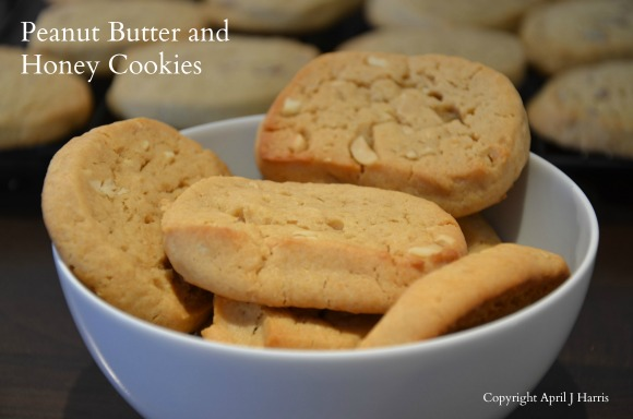 Peanut Butter and Honey Slice and Bake Cookies