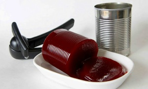 canned cranberry jelly food snob