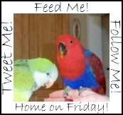 follow-me-home-friday-full-size