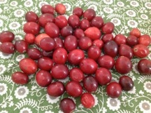 loose cranberries
