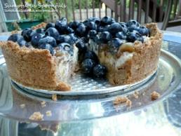 lowfat-blueberry-gooseberry-ginger-yogurt-cheesecake-21