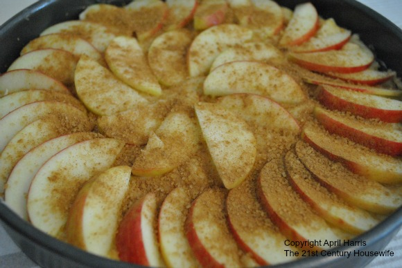 Spiced Apple and Almond Cake raw