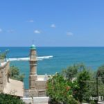 A Day in Jaffa