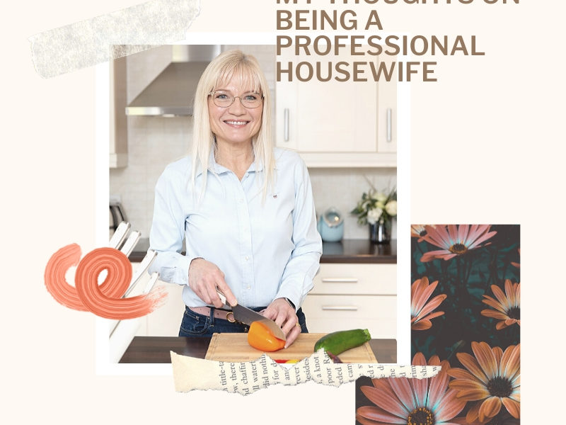 Thoughts on Being a Professional Housewife
