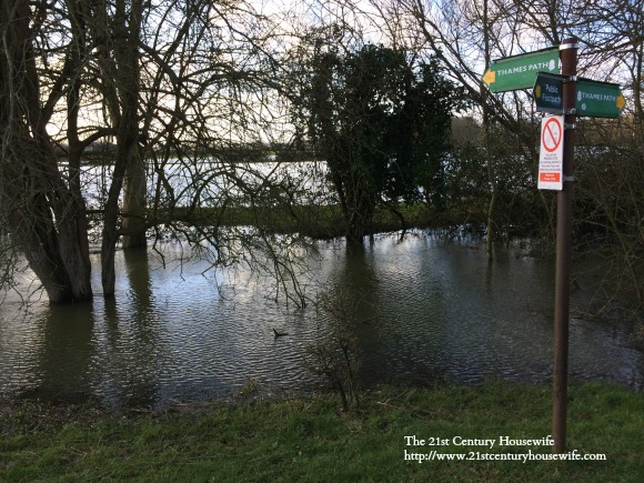 The Thames Path underwater