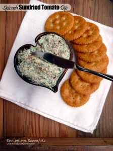 Spinach Sundried Tomato Dip at The Hearth and Soul Hop