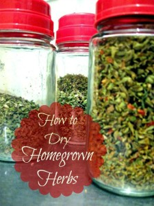 How to Dry Homegrown Herbs at The Hearth and Soul Hop