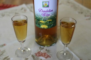 Dandelion Wine at the Hearth and Soul Hop