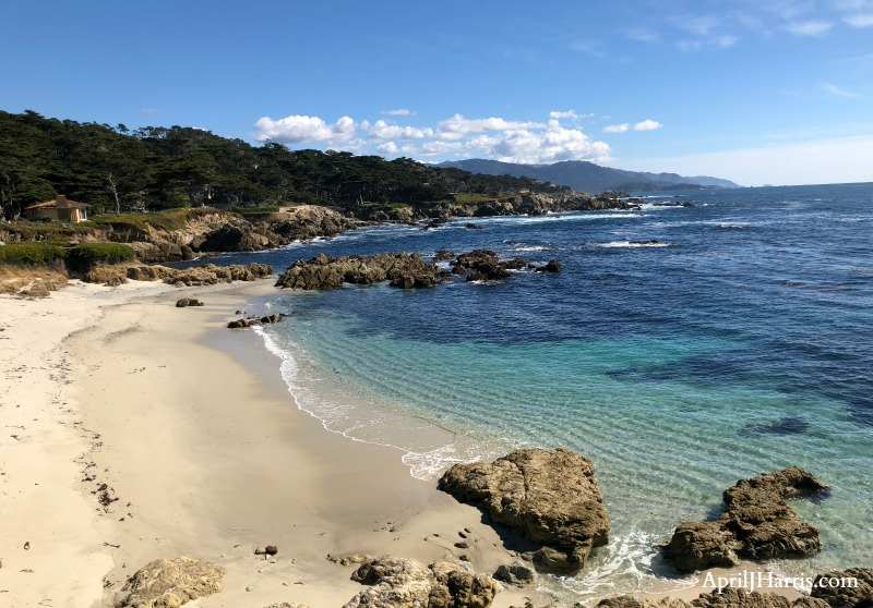 Exploring The 17 Mile Drive to Pebble Beach