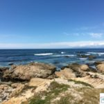 Travelling The 17 Mile Drive