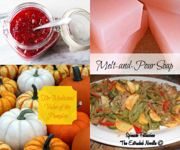 Autumn Recipes and Ideas from The Hearth and Soul Hop Link Party
