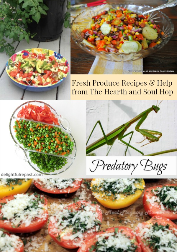Fresh produce recipes & ideas features from the Hearth and Soul Hop