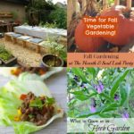 Fall Gardening from The Hearth and Soul Hop