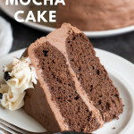 You will love my moist & chocolatey Gluten Free Mocha Cake recipe. Chocolate, coffee & a bit of spice give it a unque flavour that is hard to resist!