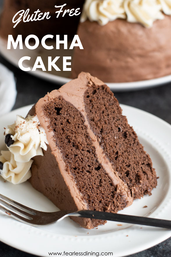 You will love my moist & chocolatey Gluten Free Mocha Cake recipe. Chocolate, coffee & a bit of spice gives it a unque flavour that is hard to resist!