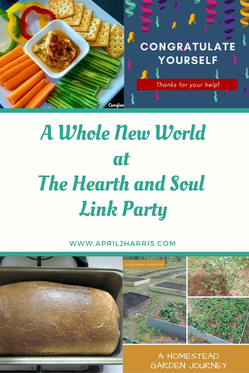 A Whole New World at The Hearth and Soul Link Party featured posts