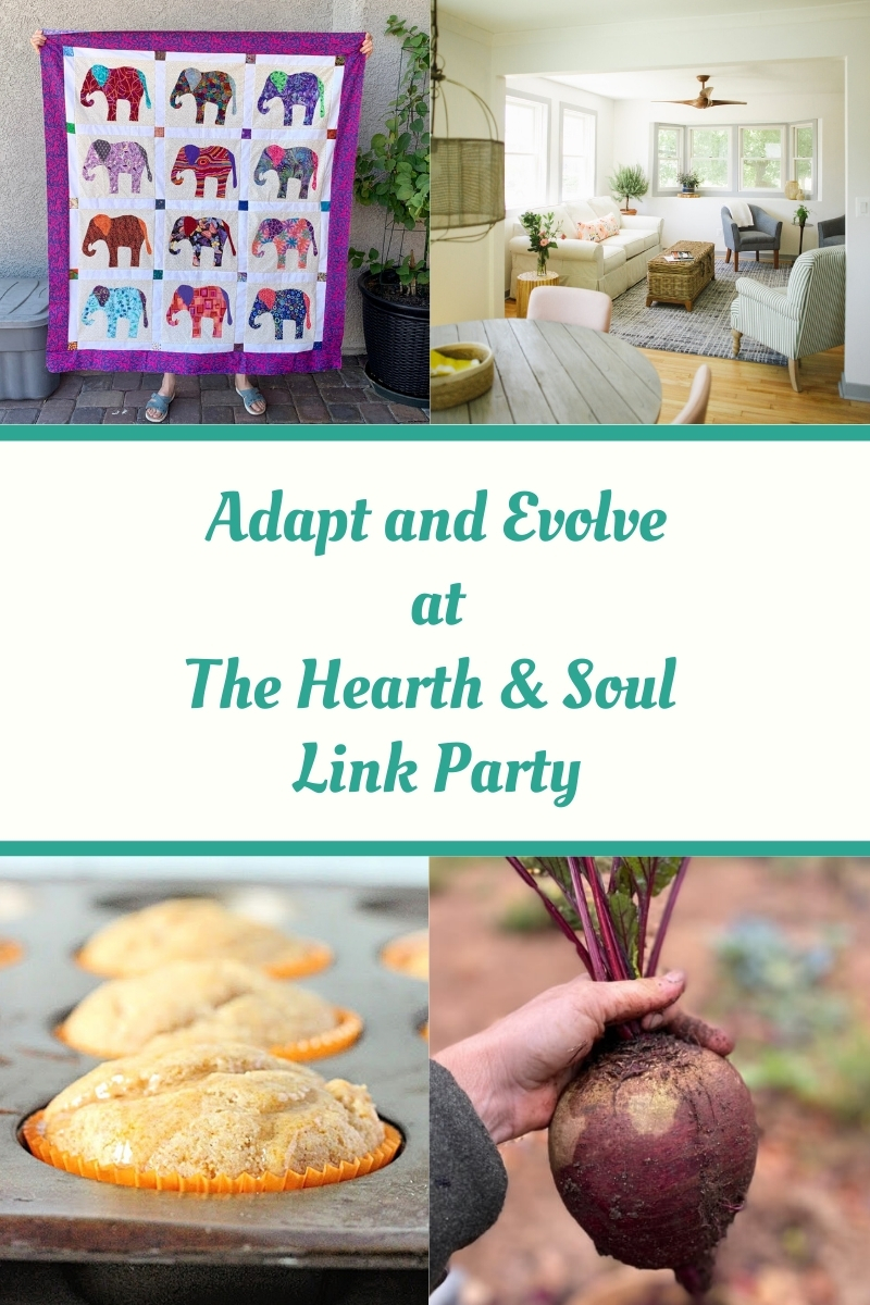 Adapt and Evolve at The Hearth and Soul LinK Party - featured posts