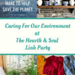 Caring for our environment featured posts at the Hearth and Soul Link Party
