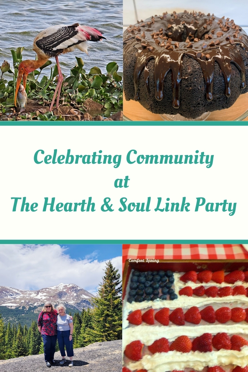 Celebrating Community Featured Posts at The Hearth and Soul Link Party